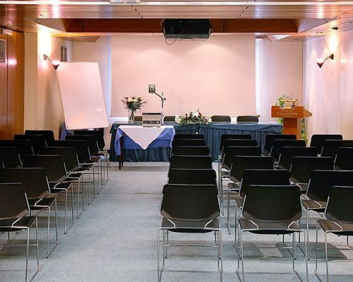 Hotel Palldion- Αίθουσες Συνεδριάσεων
